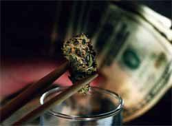 Alaska, Oregon and DC Voters OK Marijuana Legalization