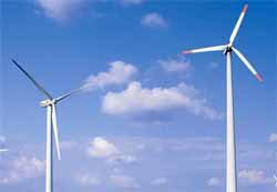 Congress challenges EPA over eagle death waivers for wind power