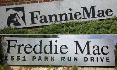 Fannie-Mae (1)