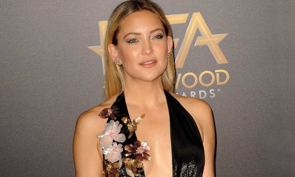 Brad Pitt Apparently NOT Dating Kate Hudson, Despite Reports